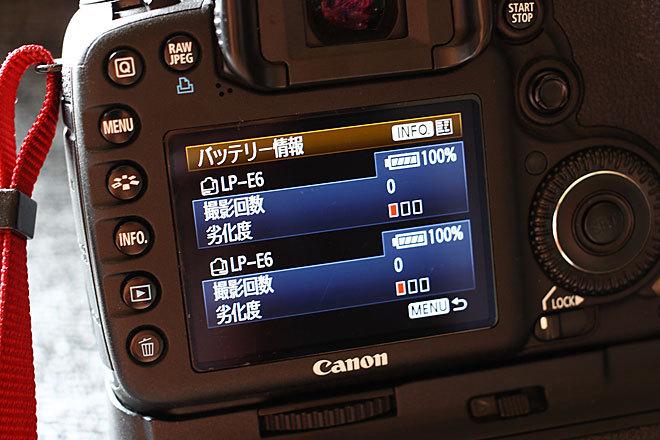バッテリー劣化度1.JPG