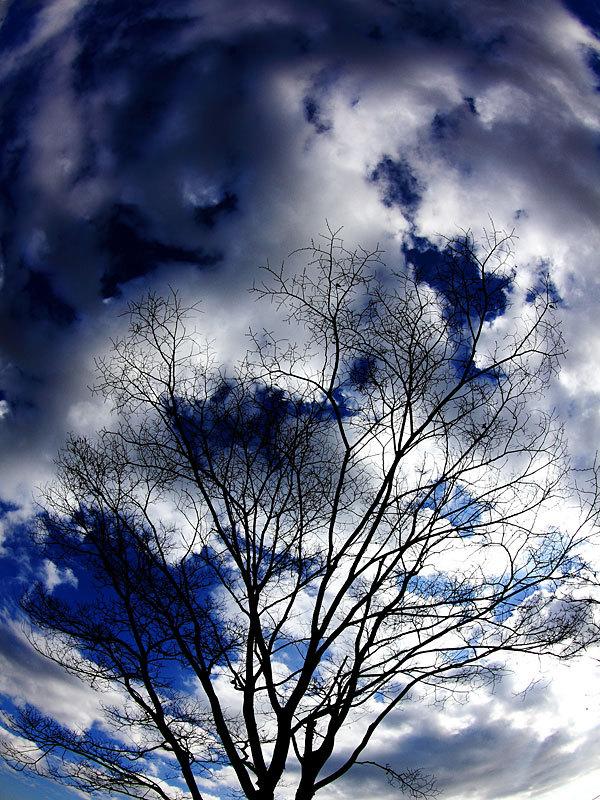 師走の雲.jpg