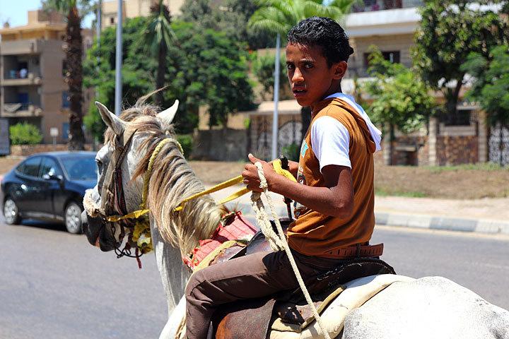 Egypt-4-09.jpg
